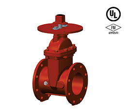 Flanged Ends – 300 PSI