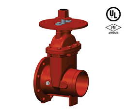 Flanged X Grooved – 300 PSI