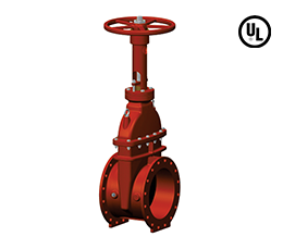 Flanged Ends – 250 PSI